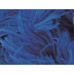 OSTRICH FEATHER FRINGE ELECTRIC BLUE
