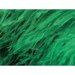 OSTRICH FEATHER FRINGE EMERALD
